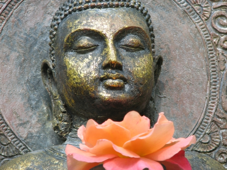 buddhamitblume